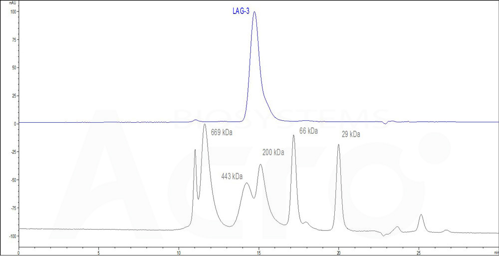 Human LAG-3, Fc Tag (HPLC-verified) (Cat. No. LA3-H5255) HPLC images