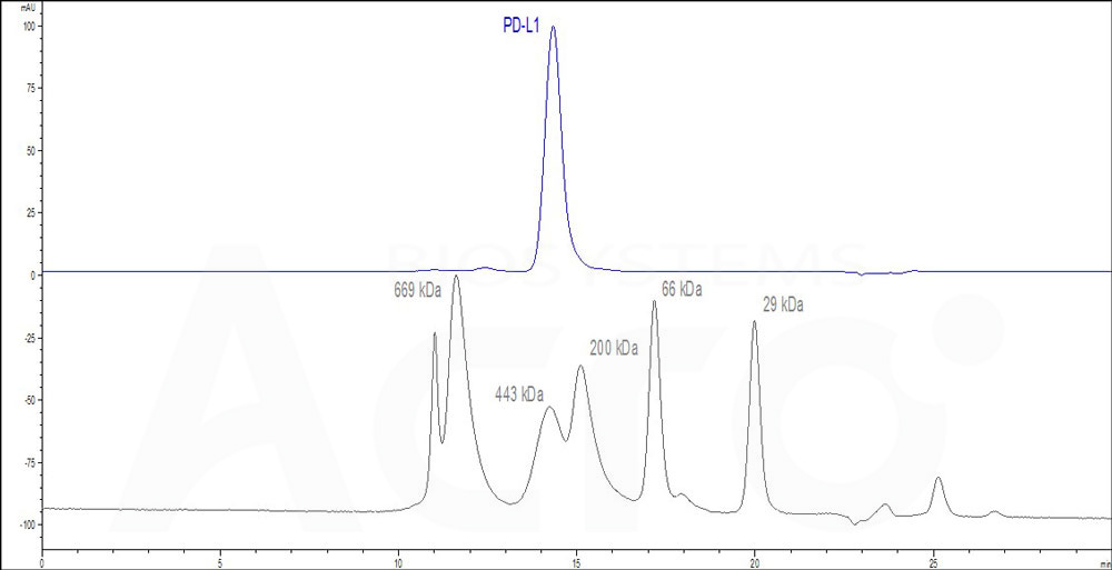 Human PD-L1, Fc Tag (Cat. No. PD1-H5258) HPLC images