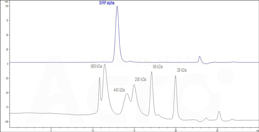 Human SIRP alpha, Fc Tag (HPLC-verified) (Cat. No. SIA-H5251) HPLC images